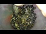 настойка на личинках восковой моли.mp4